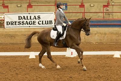 Horse 527