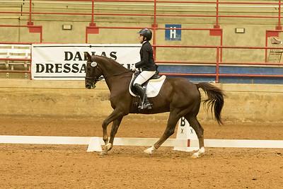 Horse 542