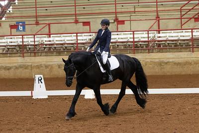 Horse 106