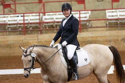 Horse 128