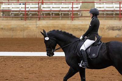 Horse 152