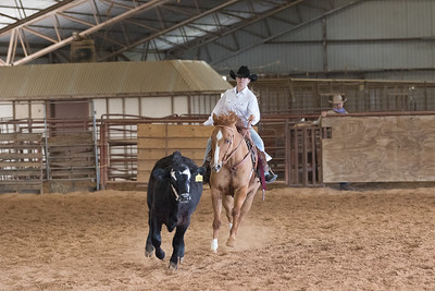 Ranch Reining/Cow