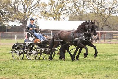 Tejas Carriage Association