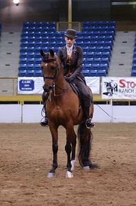 CAHC Spring Show 2010