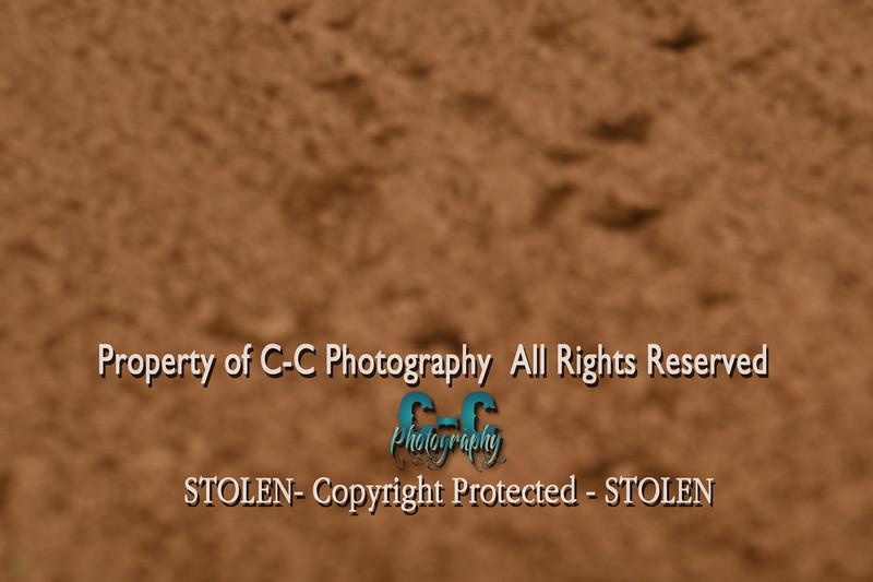 CCC_2602
