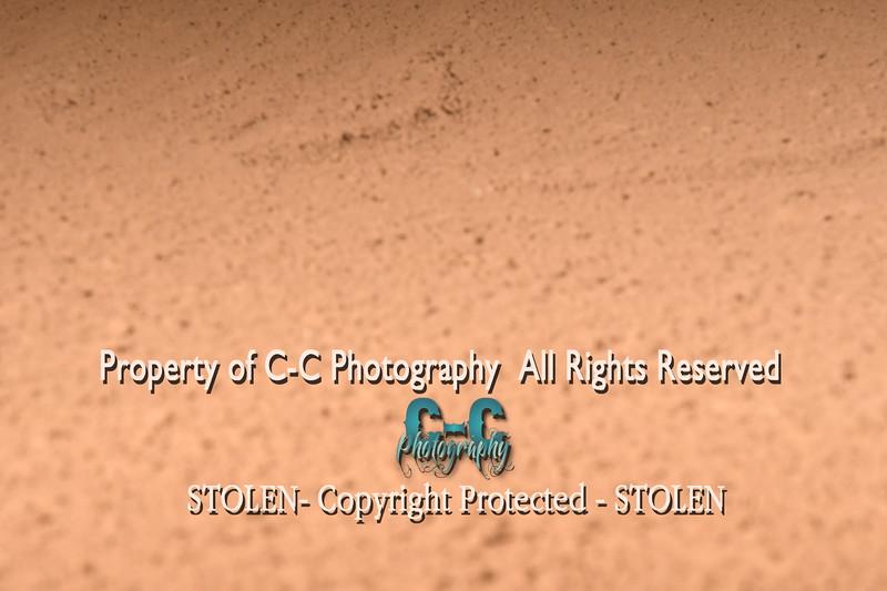 CCC_4939