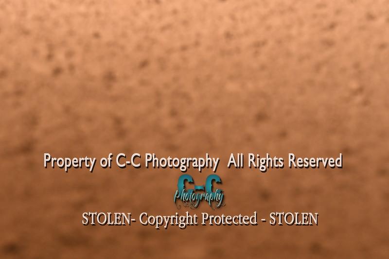 CCC_4936