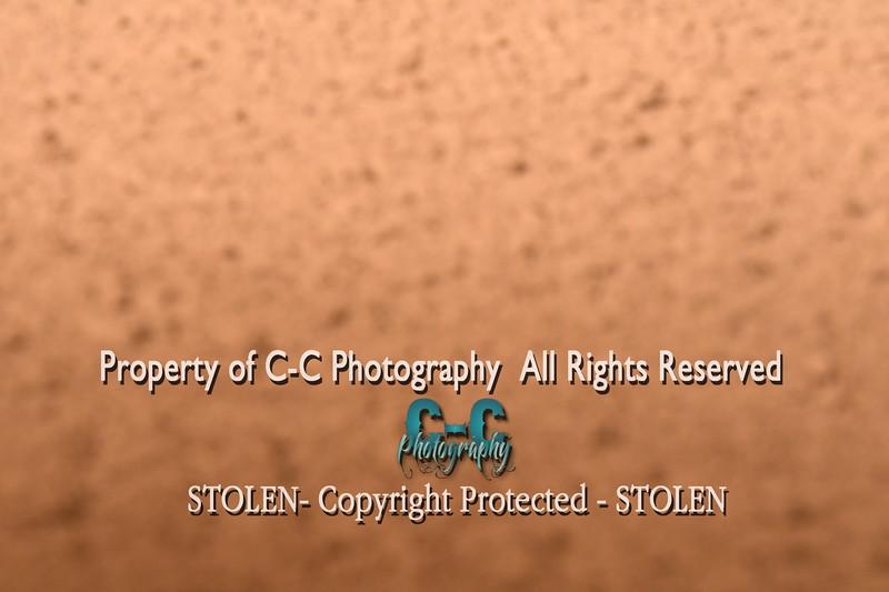 CCC_4938
