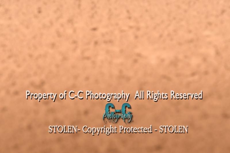 CCC_4946