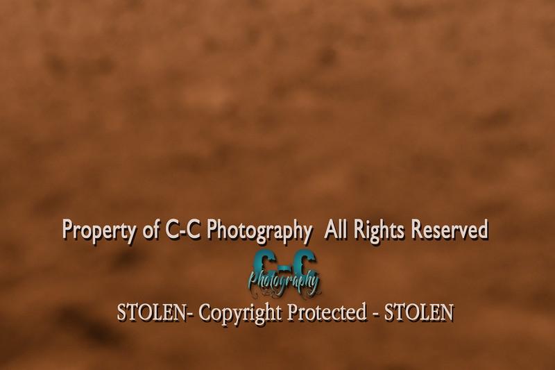 CCC_5184