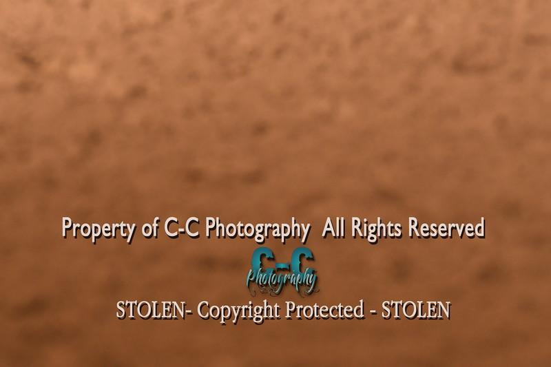 CCC_5193