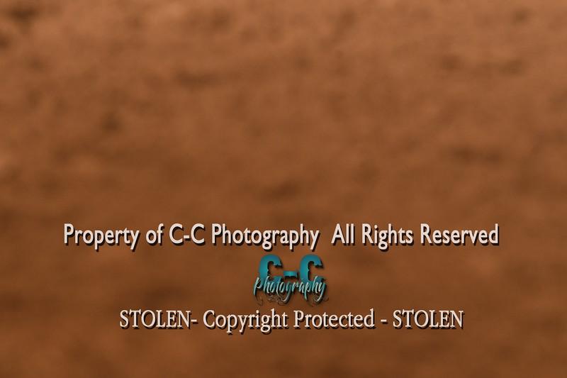 CCC_5190