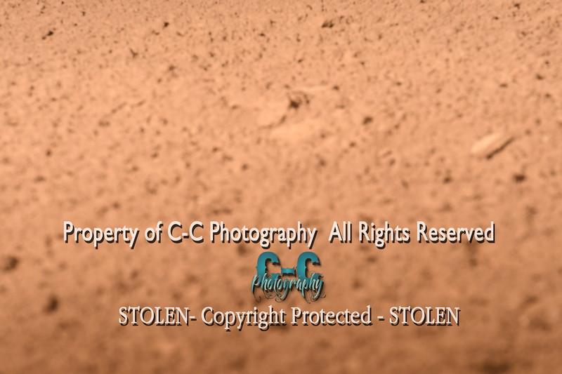 CCC_5187