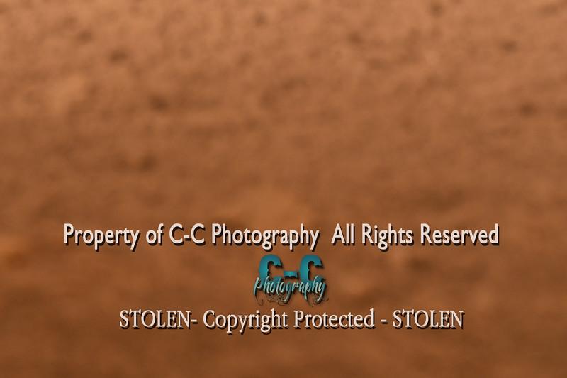 CCC_5439
