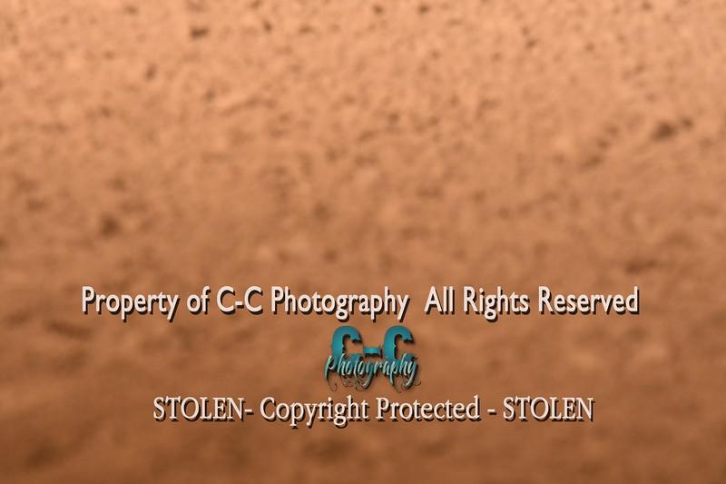 CCC_3767