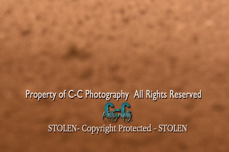 CCC_4124