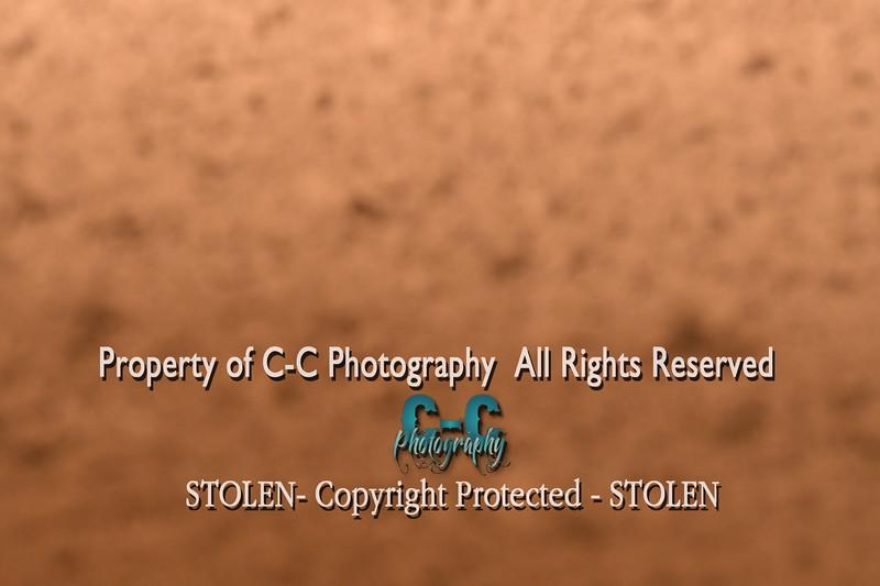 CCC_4135