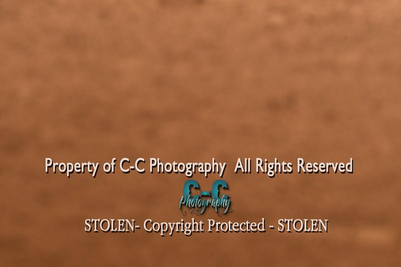 CCC_3475