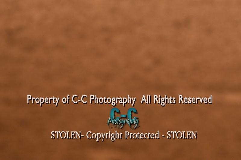 CCC_3470