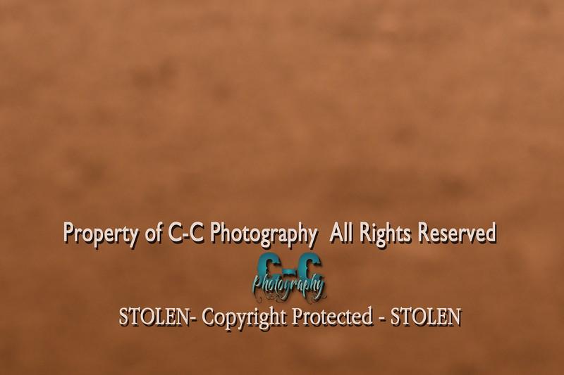 CCC_3459