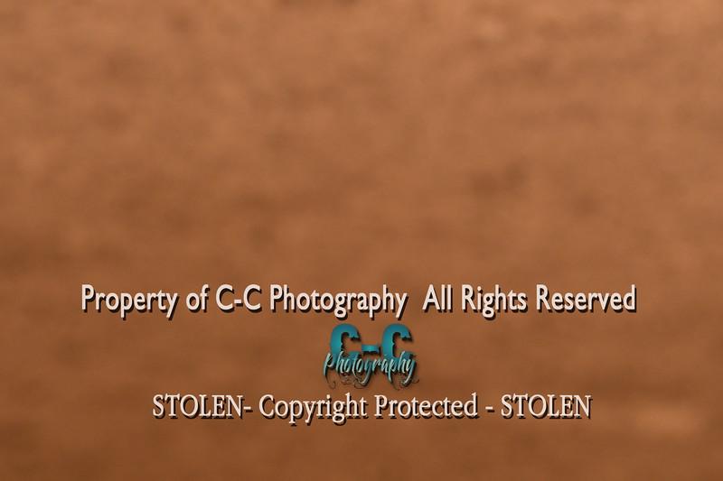 CCC_3464