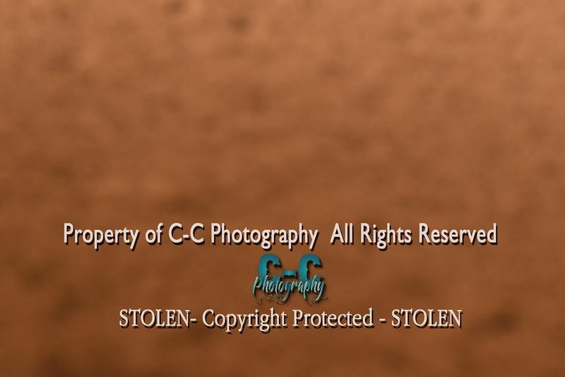CCC_4592