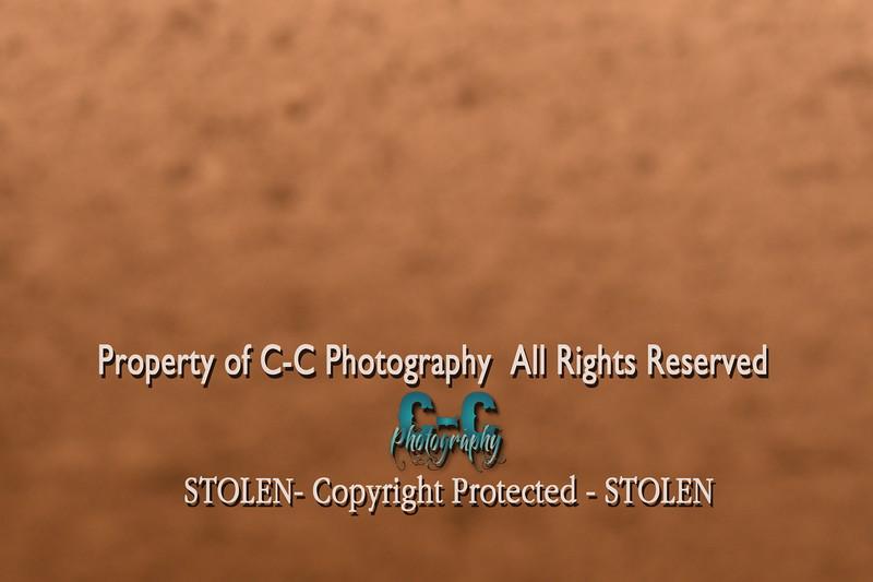 CCC_4601