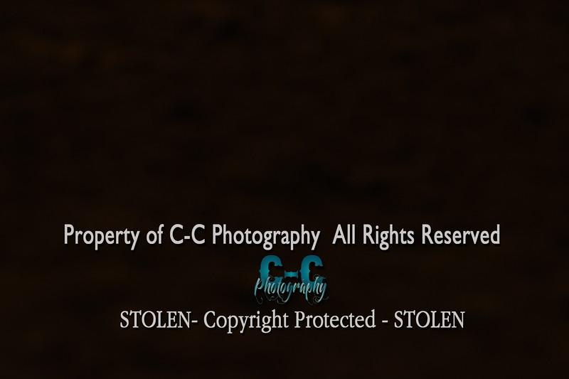 CCC_5621