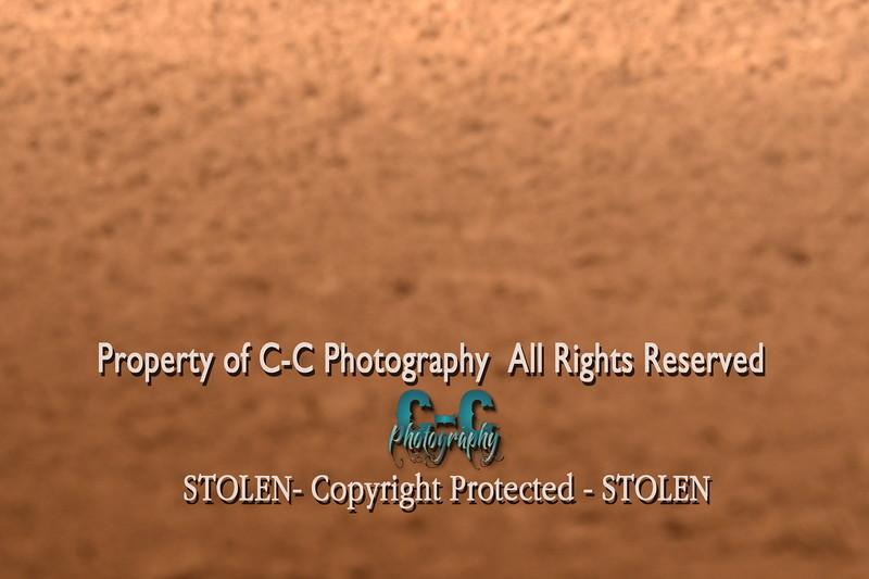 CCC_5609