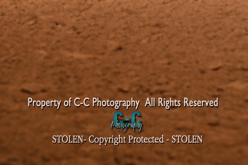 CCC_5613