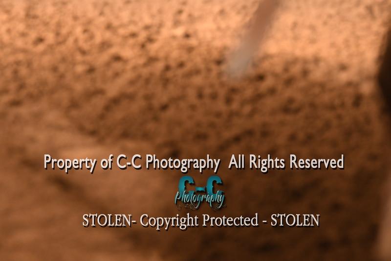CCC_5624