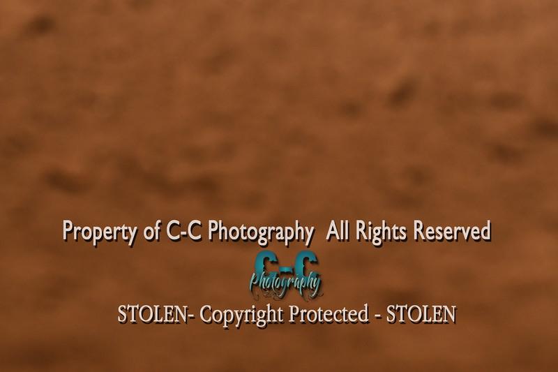 CCC_5604