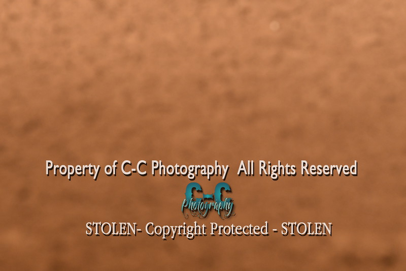 CCC_5733