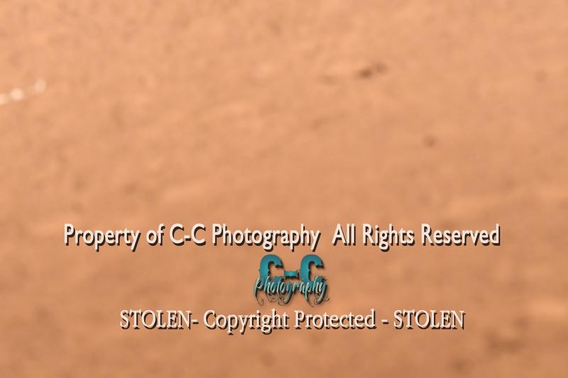 CCC_5911