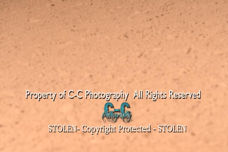 CCC_5916