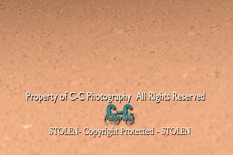 CCC_5908