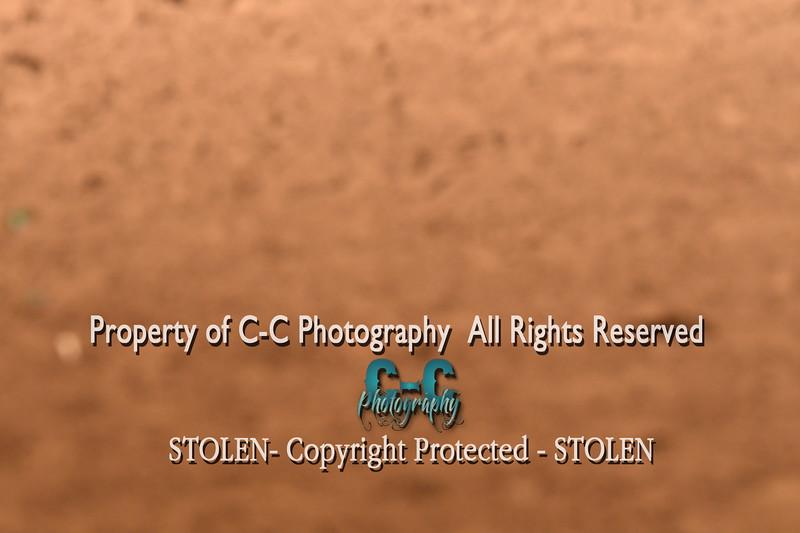 CCC_6065
