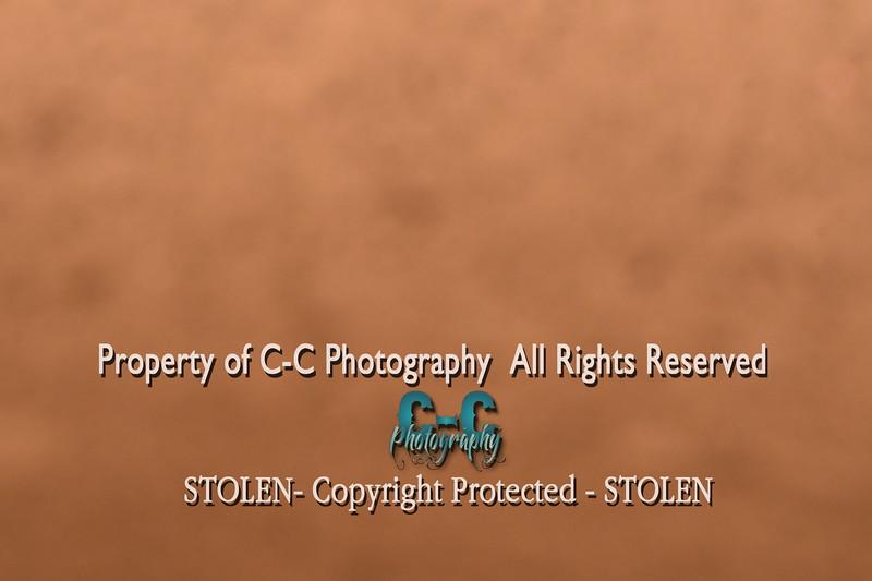 CCC_6127
