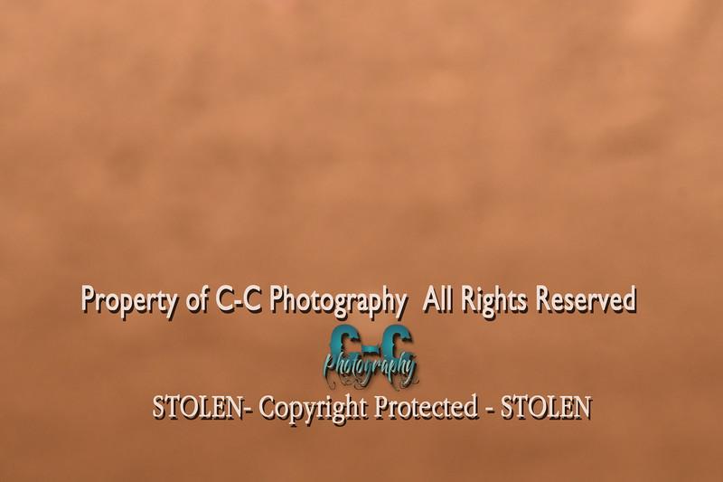 CCC_6117