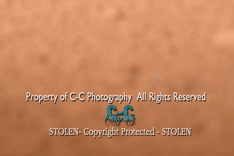 CCC_6119
