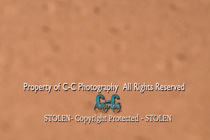 CCC_6352