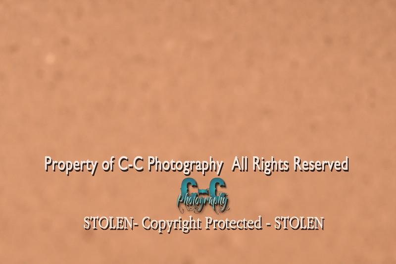 CCC_6365