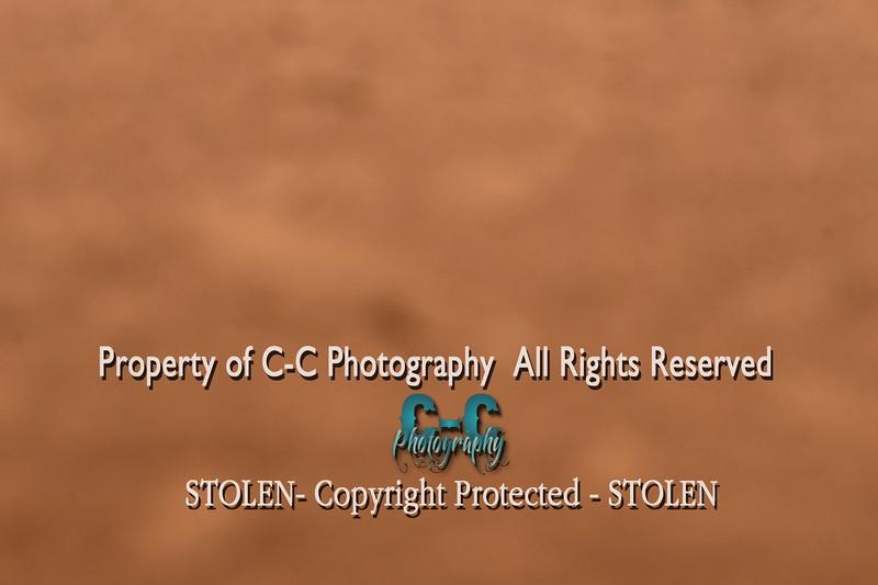 CCC_6601