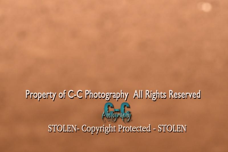 CCC_6591