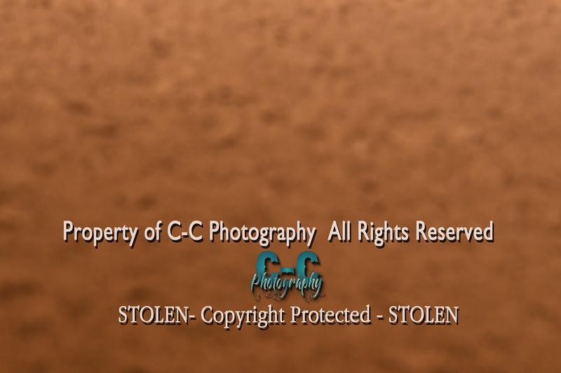 CCC_7104