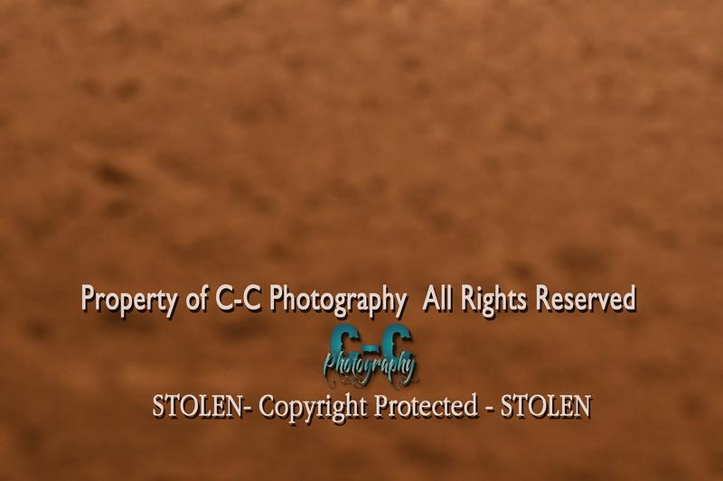 CCC_7109