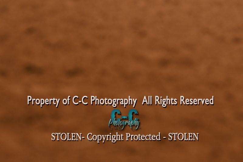 CCC_7100