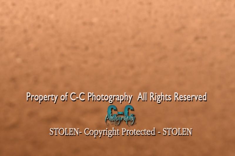 CCC_7095