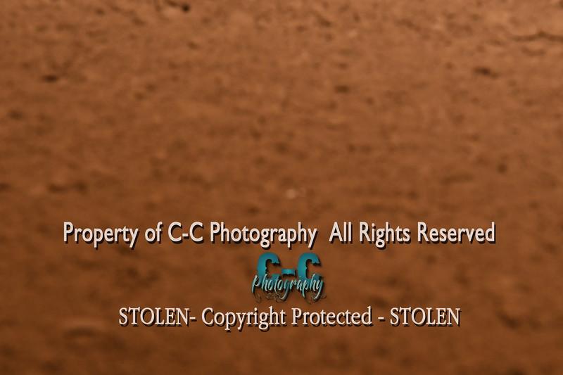 CCC_7588