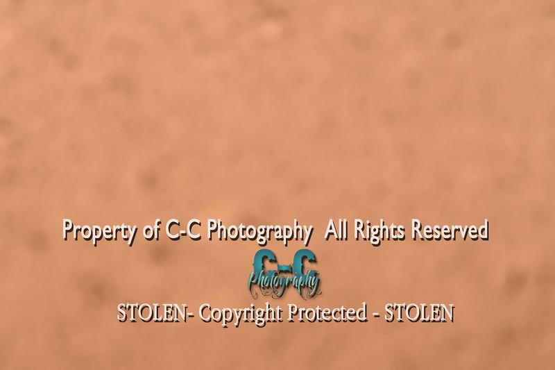 CCC_8053